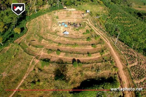 Menikmati Mentari Terbit Dan Hawa Sejuk Di Bukit Pangusen Gunungwungkal Wartaphoto Net